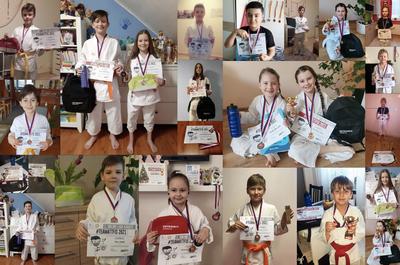 Karatisté poprvé v historii soutěžili online