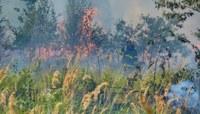 Kraj zrušil zákaz rozdělávání ohňů
