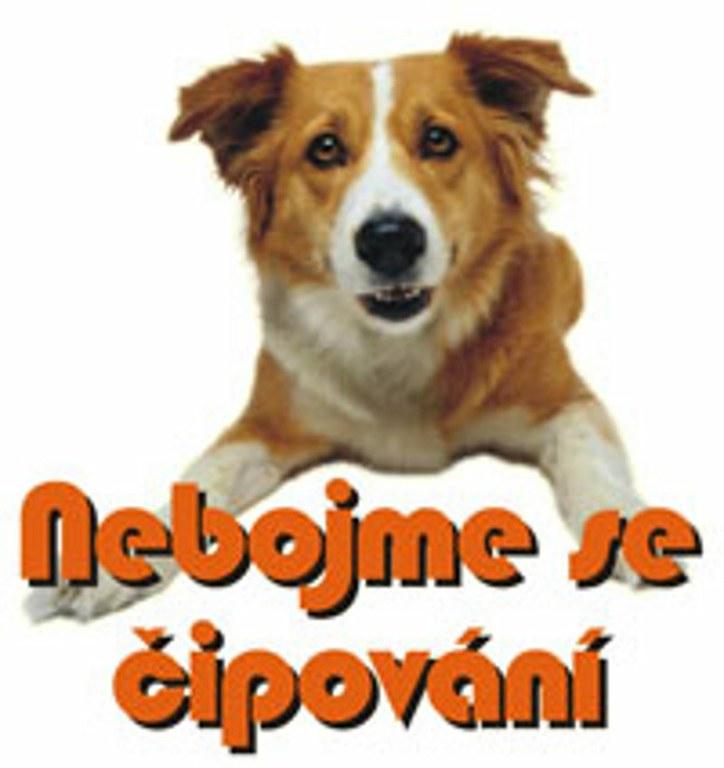 Psi musejí mít od ledna čip