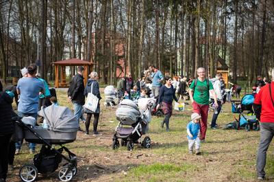Sady mladých v Ostravě-Jihu se rozrostly o 54 stromů